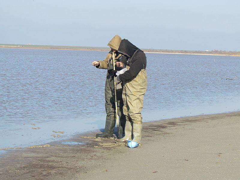 На Арабатській стрілці науковці відібрали зразки грязі та ропи