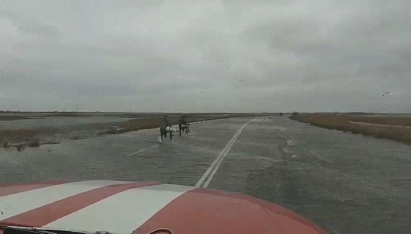 Добраться до Арабатки по затопленной дороге хлебовозке помогли спасатели